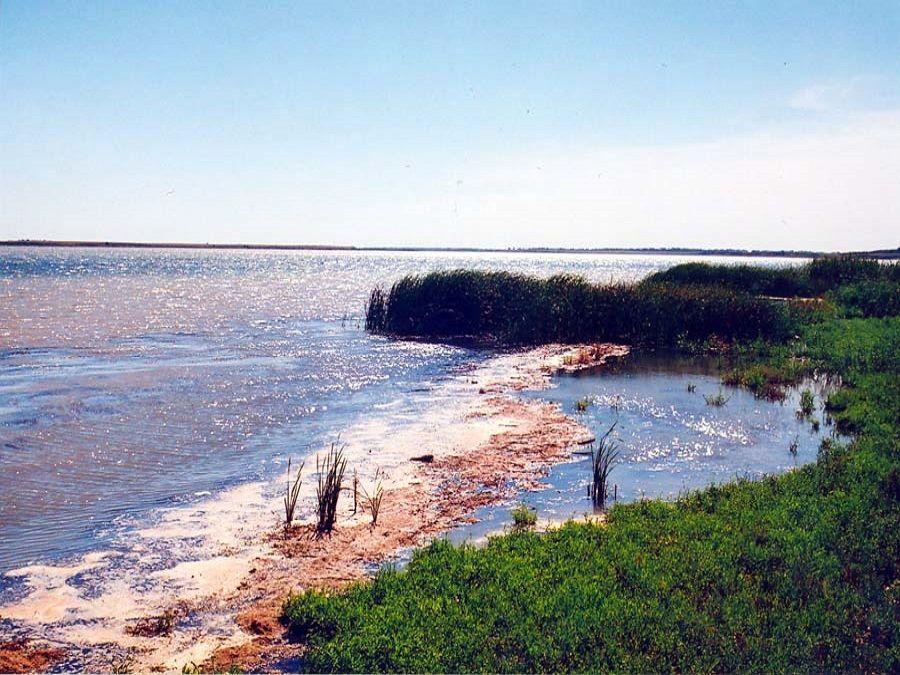 Фотография берега острова Водный в Калмыкии