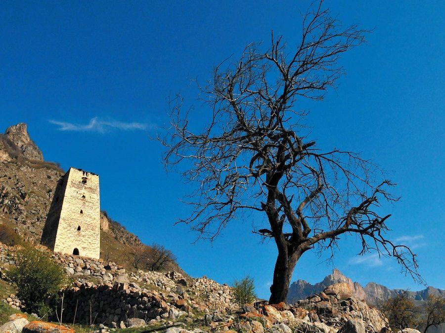 Фотография башни Зылгы-кала в Верхней Балкарии