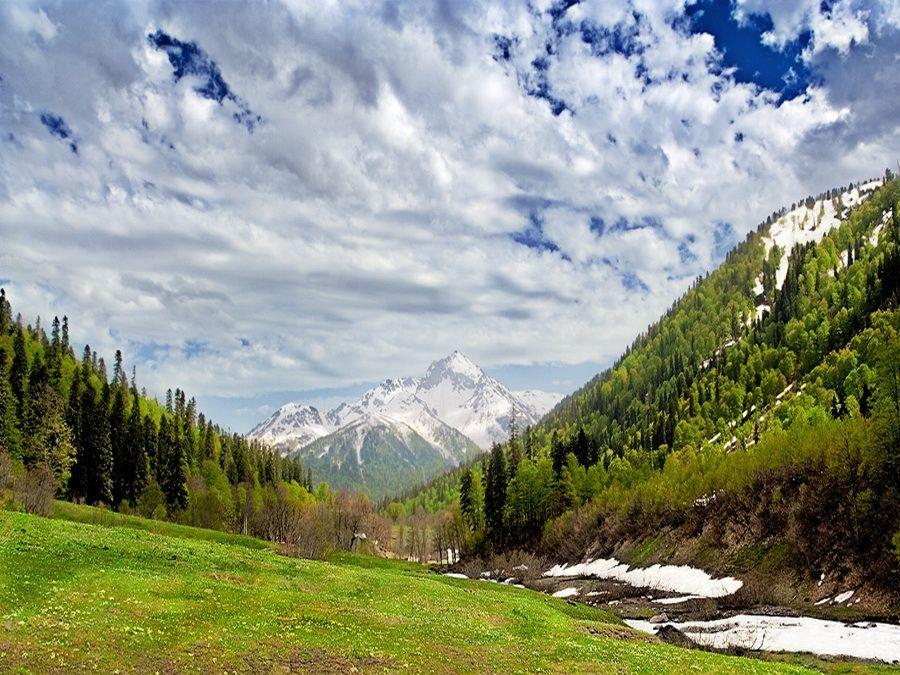 Фото альпийских лугов в долине Ауадхара в Абхазии
