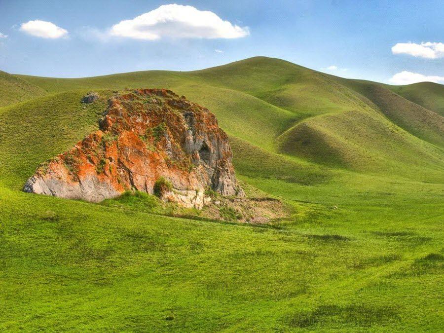 Айтуарская степь в Оренбургском заповеднике фото