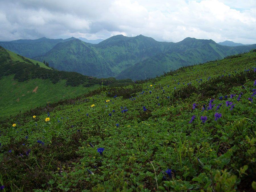 Фотография Байкальского природного биосферного заповедника