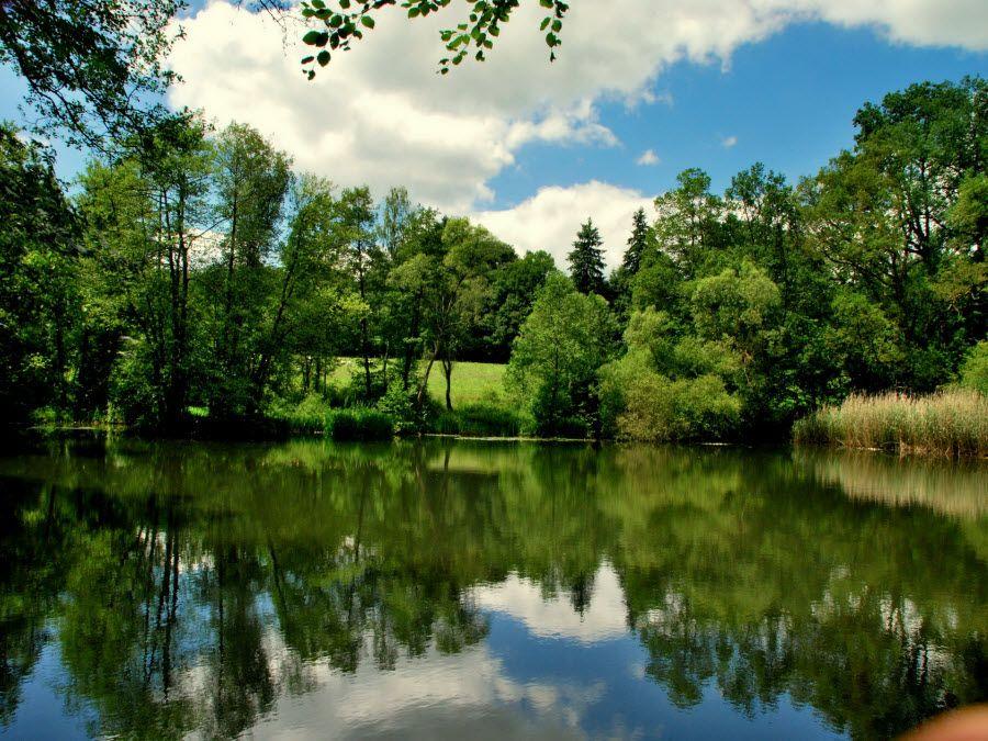 Фото озеро Бирле в Бельгии