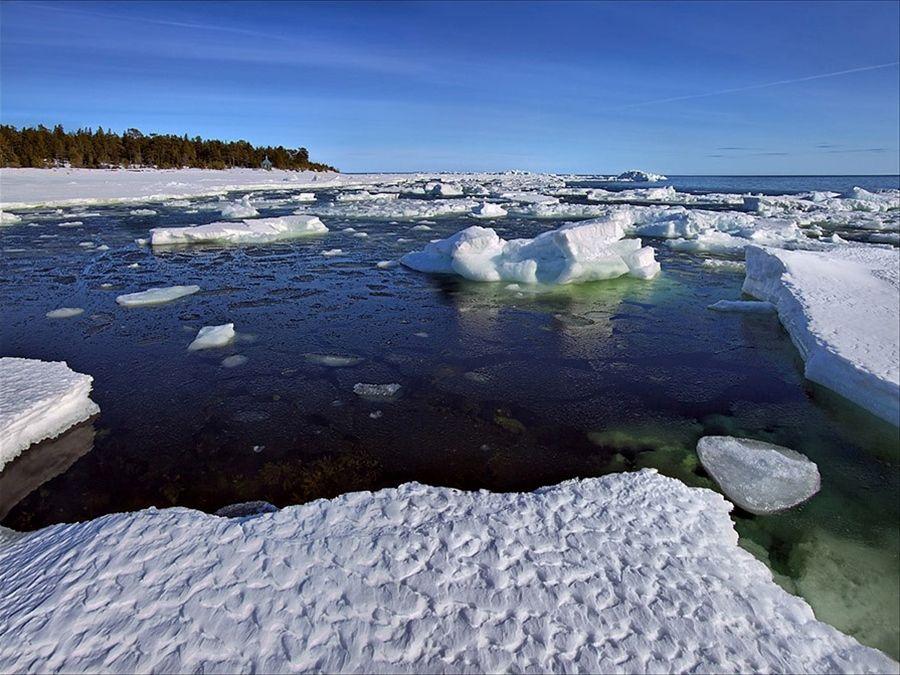 Льдины на Белом море фото Карелии