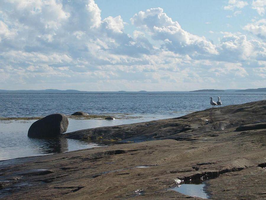 Фотография берега Белого моря в Карелии
