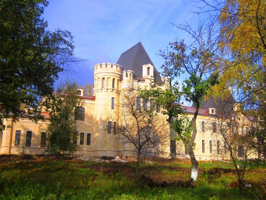 Вид утром на Борковский замок фото