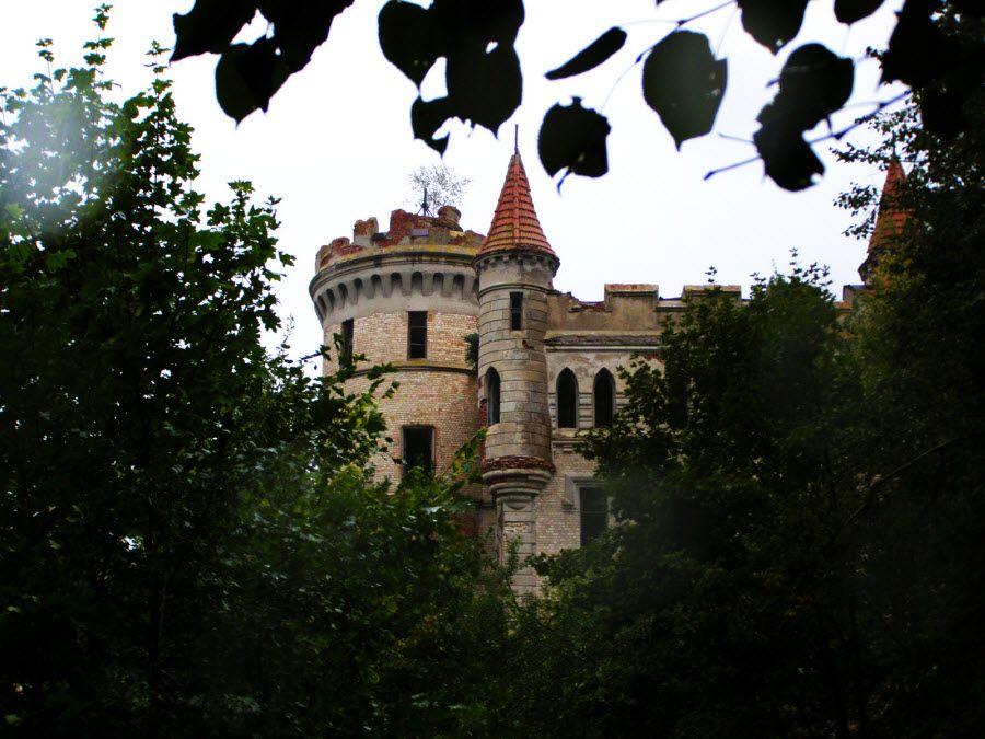 Вид из леса на Борковский замок фото