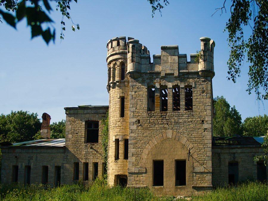 Борковский замок в Липецкой области фото