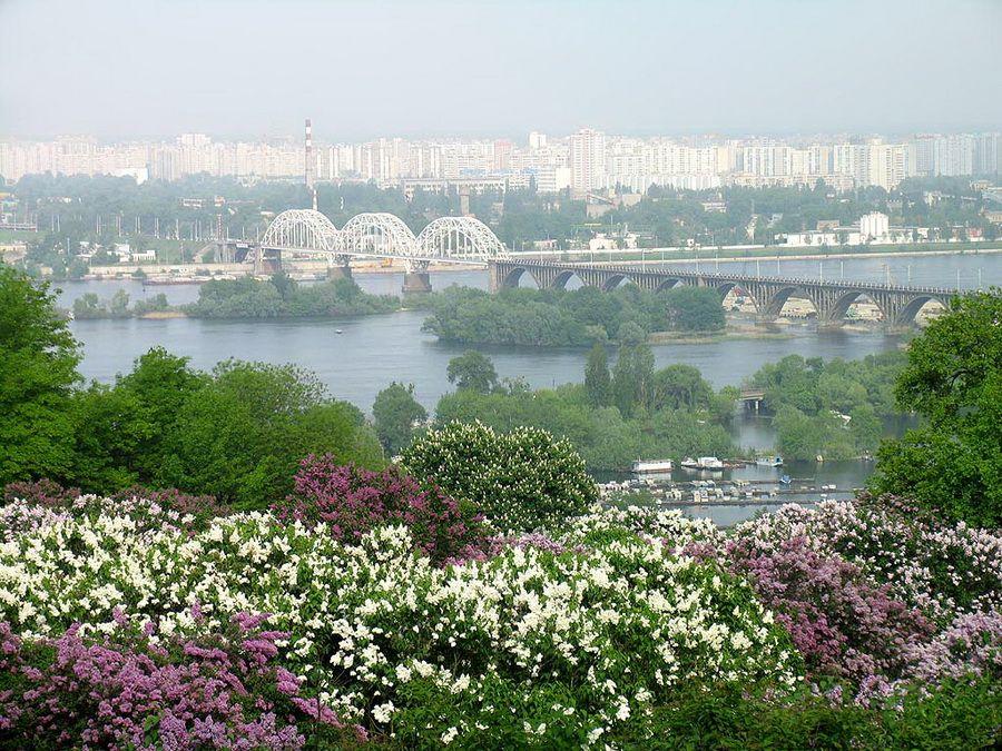 Фото сирингария на фоне панорамы Киева и Днепра