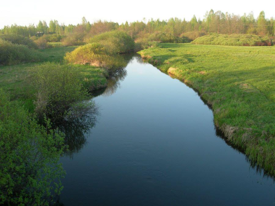Красивая природа Брянской области фото
