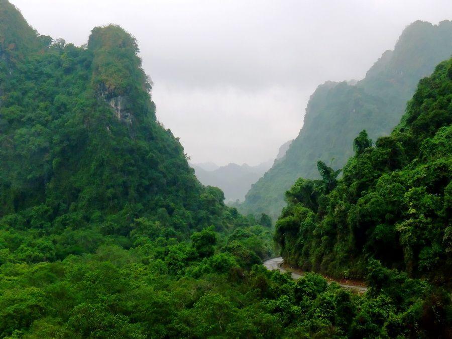 Фото Национального парка Кат-Ба на одноименном острове в бухте Халонг