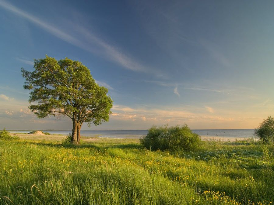 Фото природы окружающей Чудскую гору
