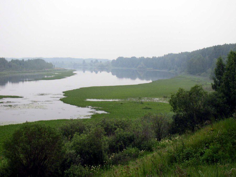 Вид на реку Иртыш с Чудской горы фото