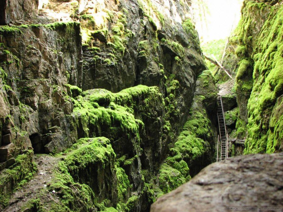 Природный парк Оленьи ручьи фото