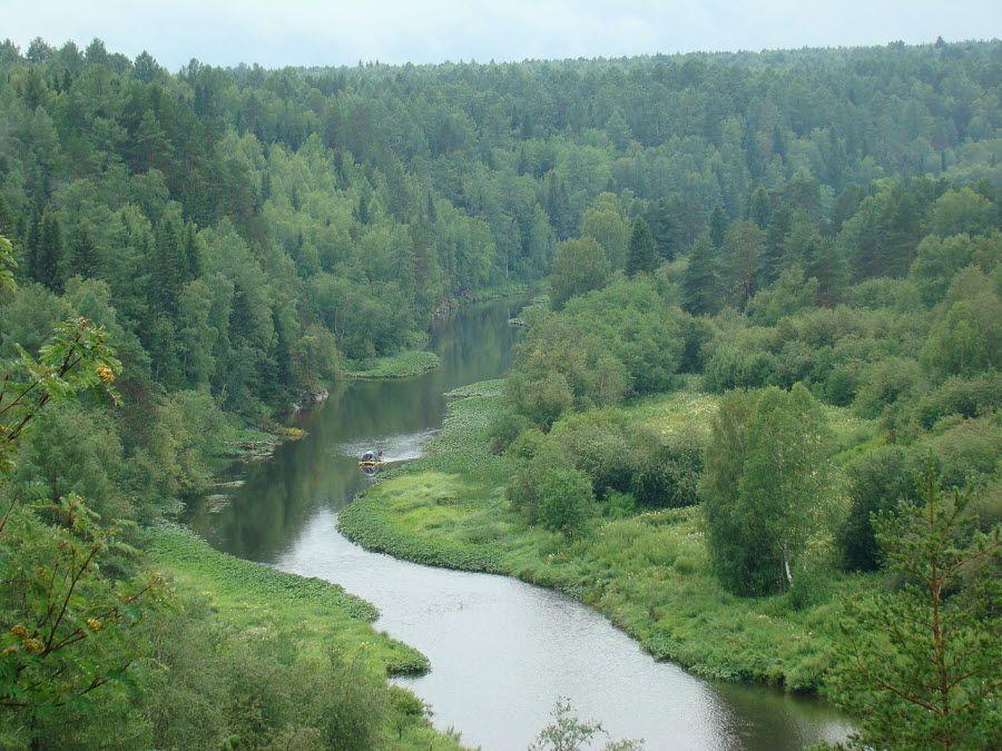 Красивая природа парка Оленьи ручьи фото