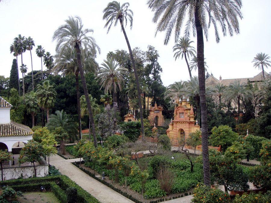Фото Альказара в Севилье и его сада