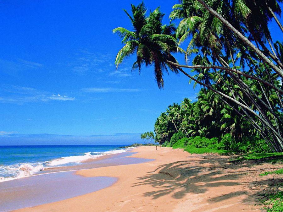 Пляж Палолем на Гоа фото