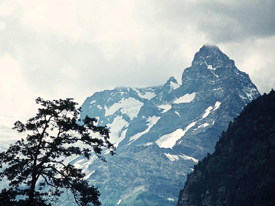 Фотография горы Эрцог