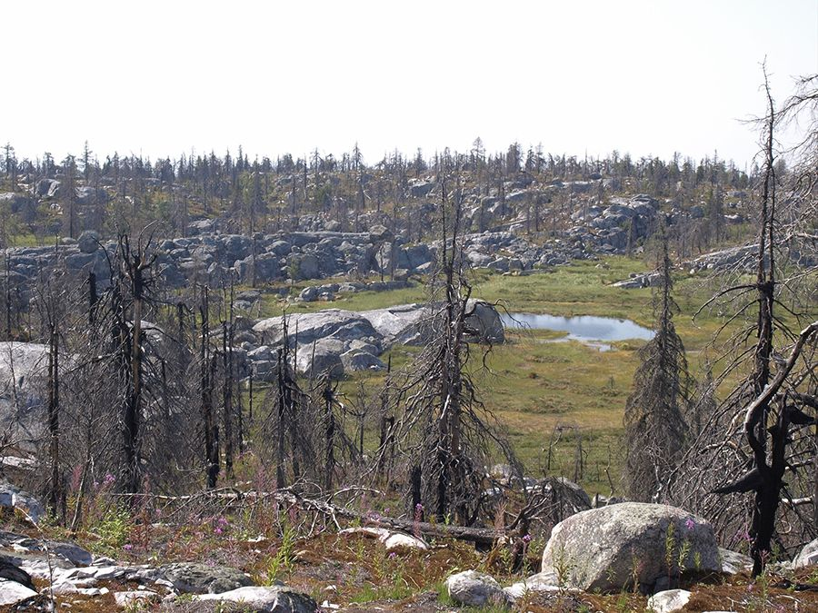 Гора Воттоваара фотография вершины