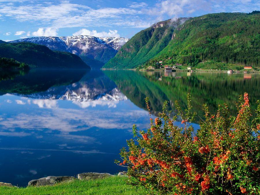 Фотография фьорда Хардангера в Норвегии