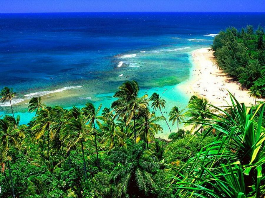 Фото одного из пляжей на Гавайях