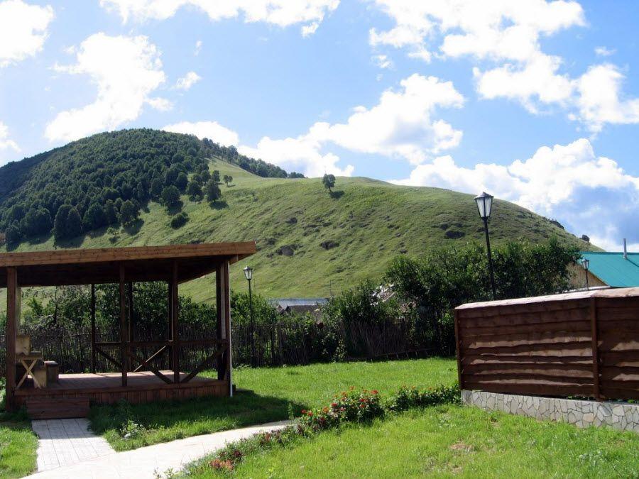 Фото красивой природы окружающей усадьбу Репина