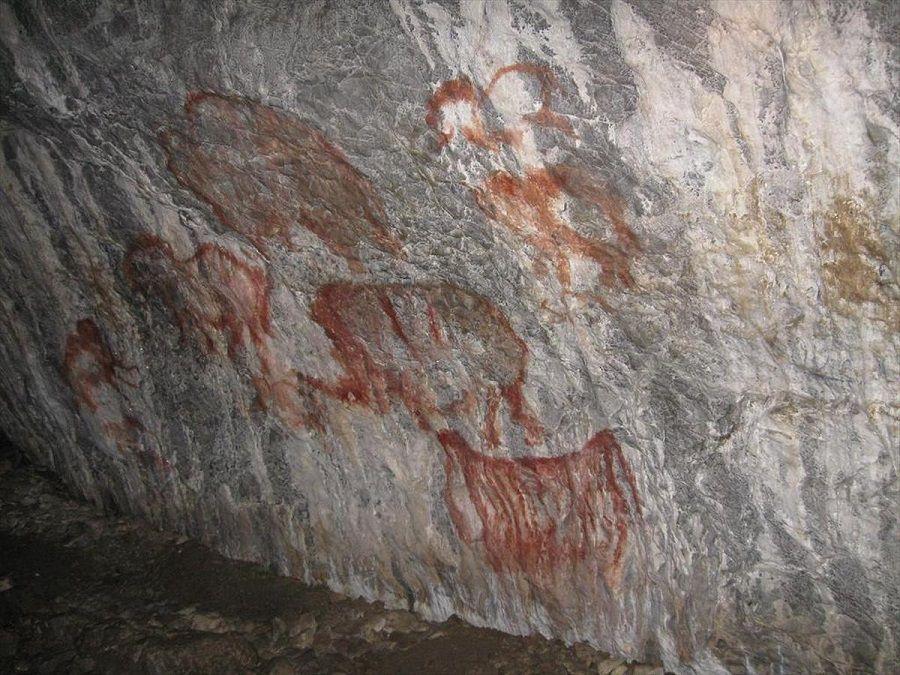 Фотография наскальных рисунков в Каповой пещере