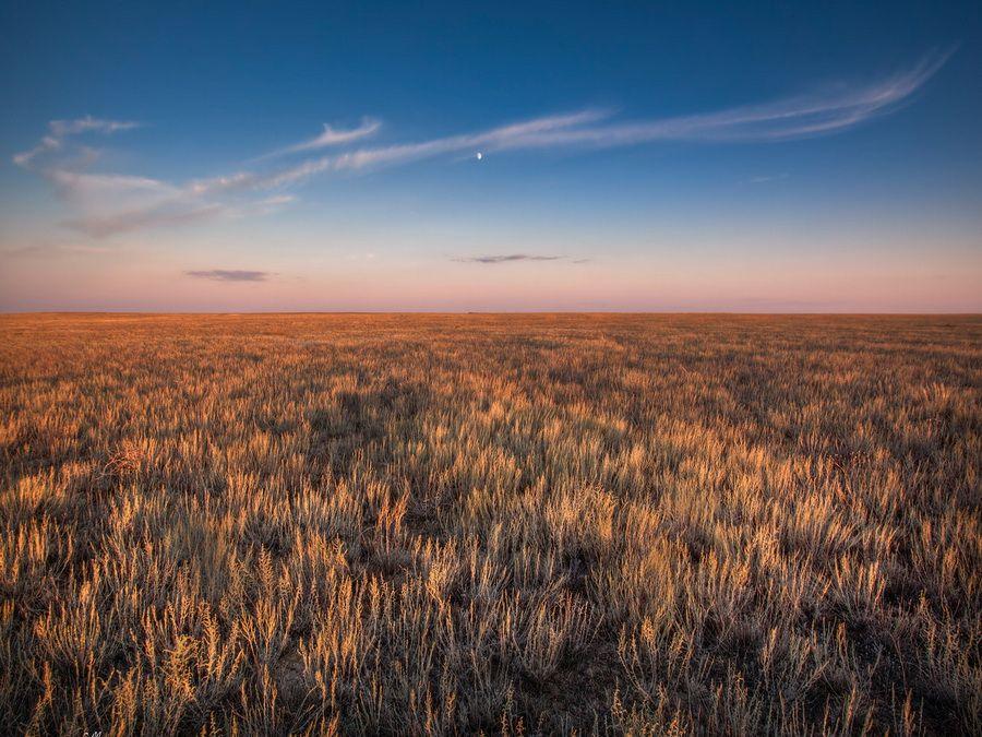 Степные пейзажи Казахстана фотография