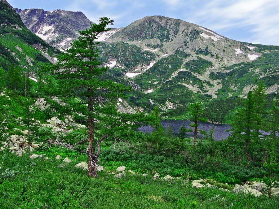 Фото красивых лесов Кемеровской области