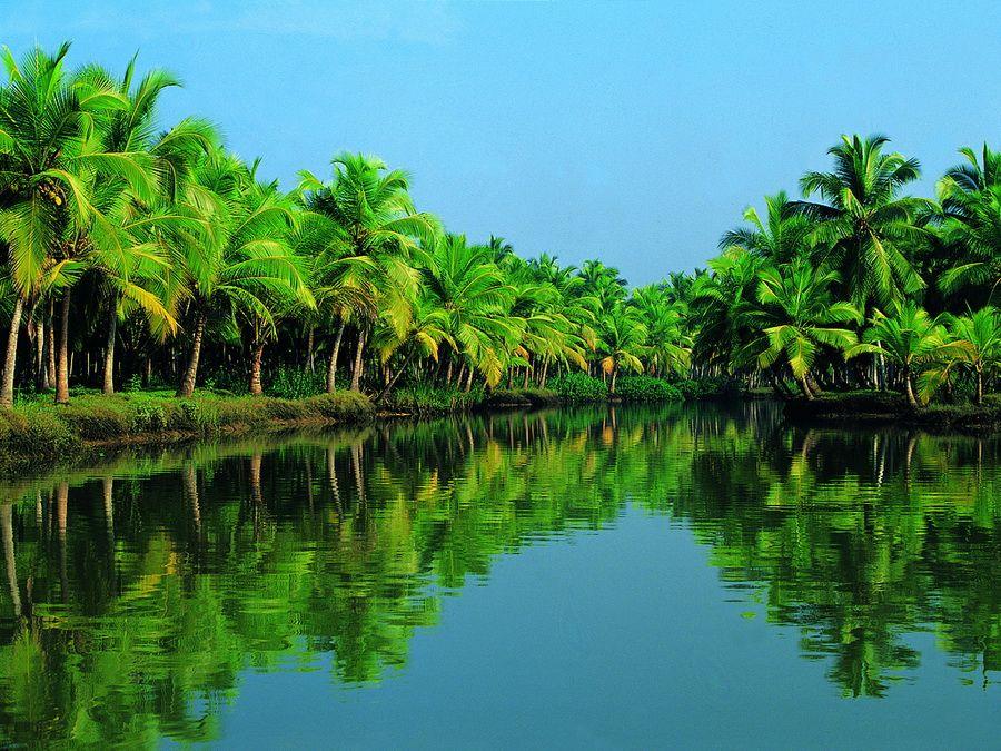 Фото пейзажа Кералы Индия