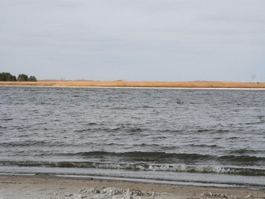 Фотография озера Горькое в Курганской области