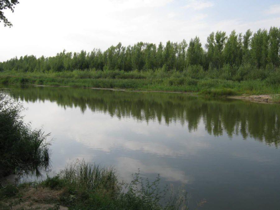 Фото природы в окрестностях Соль-Илецка