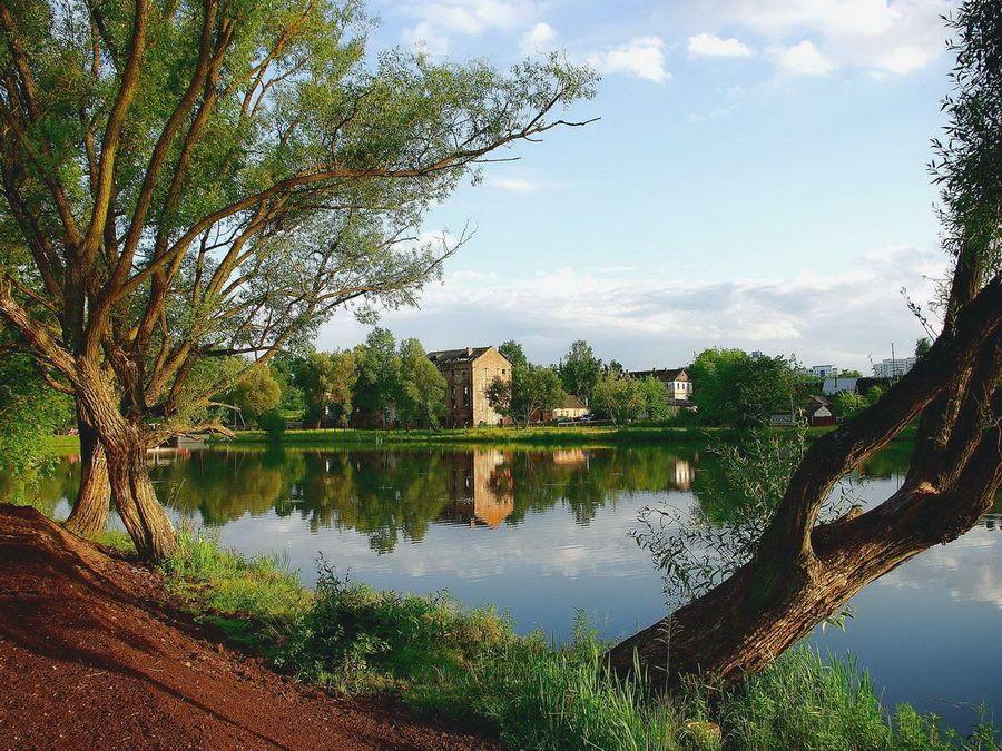 Озеро в Лошицком парке фото Минска