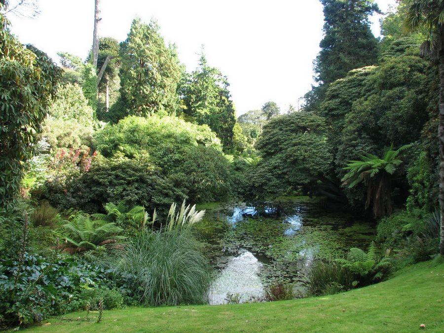 Затерянные сады Хелигана в Корнуолле фото заросшего зеленью озера