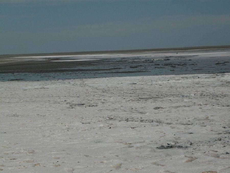 Фотография Малого Яшалтинского озера летом