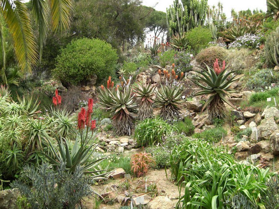 Ботанический сад Маримуртра в Испании фотография