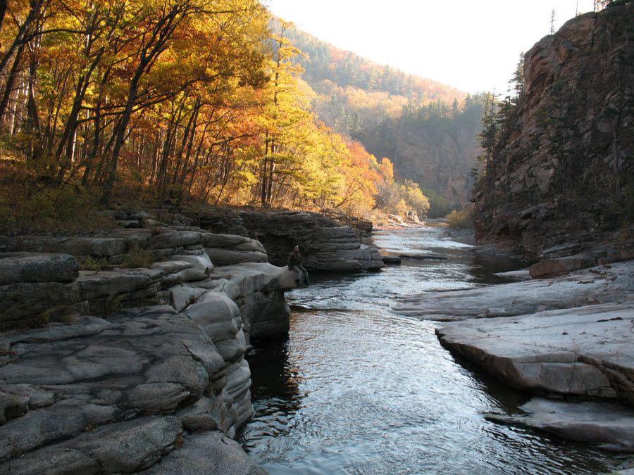 Мещерский национальный парк осенью фото