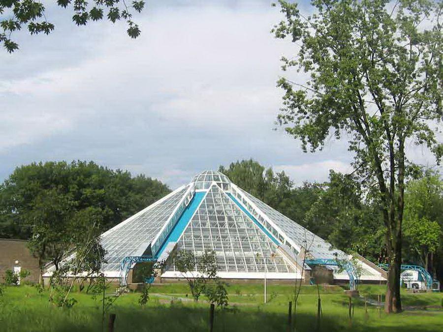 Фотография оранжереи в Минском ботаническом саду