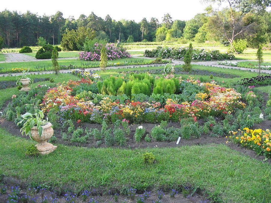 Центральный ботанический сад в Минске фото