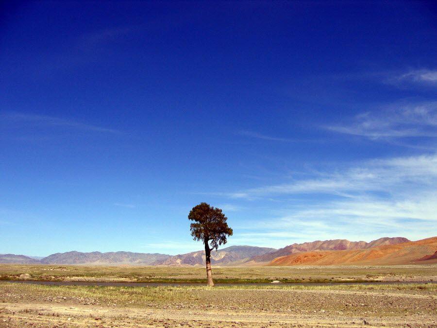 Фото прекрасной природы Монголии