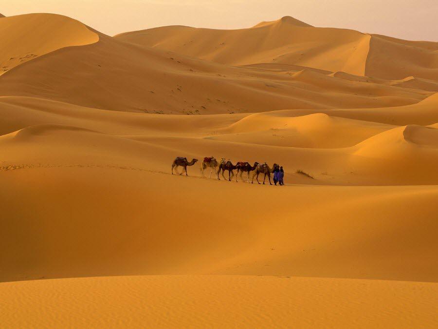 Фото пустыни Сахара в Марокко