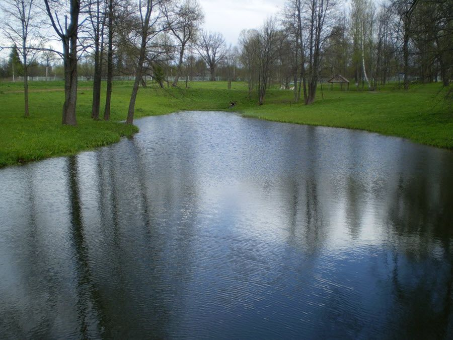 Пруд на территории усадьбы М.И. Глинки фото