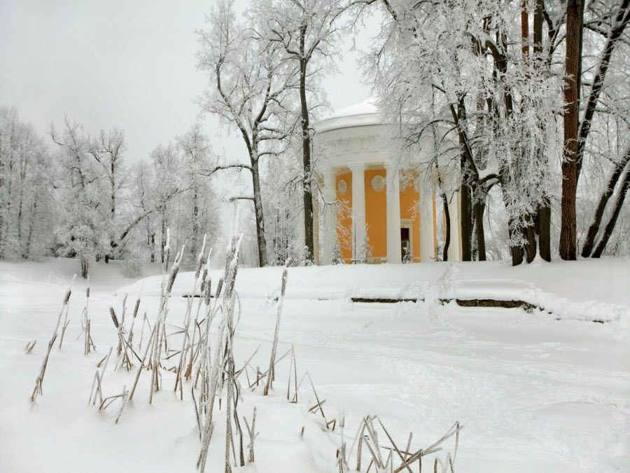 Музей-заповедник Павловск вид зимой фото