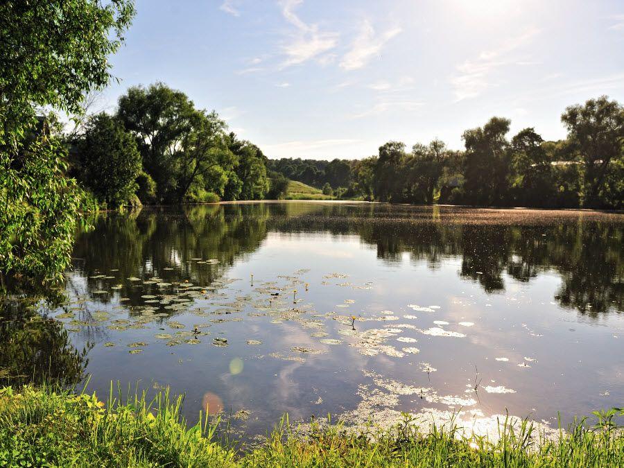 Вид на природу, окружающую музей-усадьбу А.К. Толстого фото