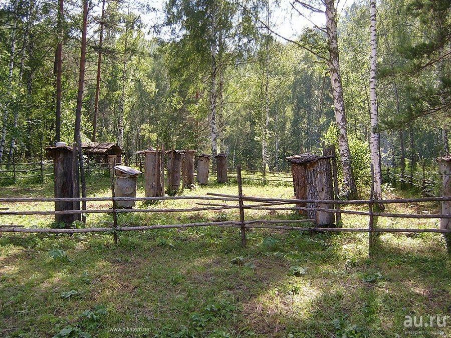 Фотография пасеки в Музее пчеловодства в Башкортостане