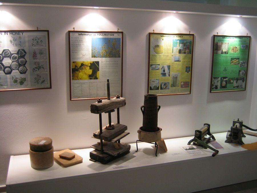 Фотография экспонатов в Музее пчеловодства в Башкирии