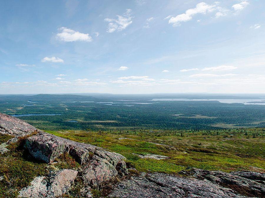Фотография вида на Национальный парк Паанаярви с горы