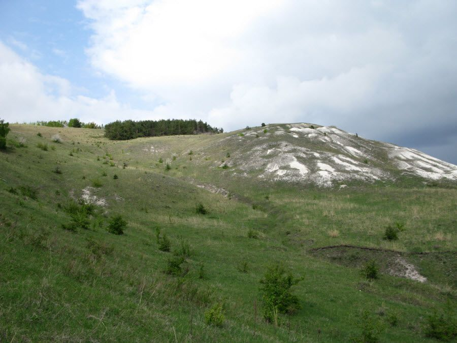 Панорама Национального парка Хвалынский фото