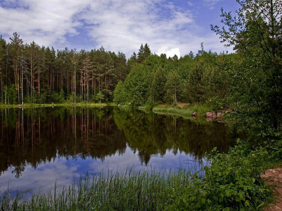 Национальный парк Орловское полесье фото
