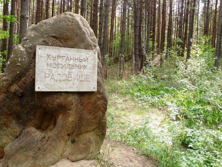 Городище Радовищи на территории Орловского полесья фото