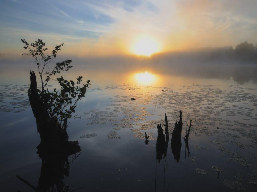 Вид на природу Воскресенского Поветлужья фото